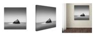 "Trademark Global Dave MacVicar 'Pointed' Canvas Art - 24"" x 24"" x 2"""