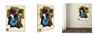 """Trademark Global Vintage Apple Collection 'Papillons 16' Canvas Art - 24"""" x 18"""" x 2"""""""