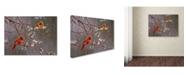 "Trademark Global Wanda Mumm 'Spring Glory' Canvas Art - 19"" x 14"" x 2"""