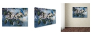 "Trademark Global Wanda Mumm 'Apple Blossoms' Canvas Art - 24"" x 18"" x 2"""