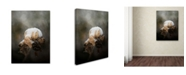 "Trademark Global Jai Johnson 'Waiting On Spring' Canvas Art - 19"" x 14"" x 2"""