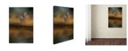 "Trademark Global Jai Johnson 'Sunrise At The Pond' Canvas Art - 47"" x 30"" x 2"""