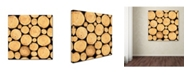"Trademark Global Jean Plout 'Wilderness Lodge H' Canvas Art - 14"" x 14"" x 2"""
