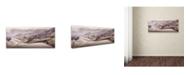 "Trademark Global Moises Levy 'Rice Terraces 1' Canvas Art - 47"" x 20"" x 2"""