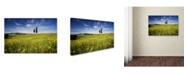 "Trademark Global Robert Harding Picture Library 'Grassy Landscape' Canvas Art - 24"" x 16"" x 2"""