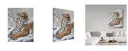 "Trademark Global Jeff Tift 'Power And Grace' Canvas Art - 24"" x 18"" x 2"""
