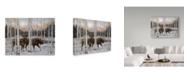 "Trademark Global Jeff Tift 'Forest Twilight' Canvas Art - 24"" x 18"" x 2"""