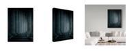 "Trademark Global Miroslaw 'Size Proportions' Canvas Art - 35"" x 2"" x 47"""