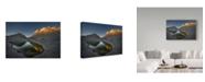 """Trademark Global Jianyi Wu 'White Pocket' Canvas Art - 32"""" x 2"""" x 22"""""""