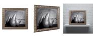 """Trademark Global Moises Levy 'Cayendo' Ornate Framed Art - 20"""" x 16"""" x 0.5"""""""