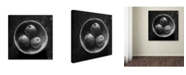 """Trademark Global Moises Levy 'Circulo de Peras' Canvas Art - 24"""" x 24"""" x 2"""""""