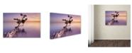 "Trademark Global Moises Levy 'Water Tree XI' Canvas Art - 19"" x 12"" x 2"""