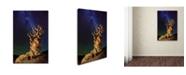 "Trademark Global Tanja Ghirardini 'Bristlecone Pine' Canvas Art - 47"" x 30"" x 2"""