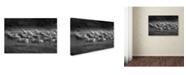"Trademark Global Milan Malovrh 'Stampedo' Canvas Art - 19"" x 12"" x 2"""