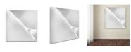 """Trademark Global Jeroen Van De 'The Incoming Light' Canvas Art - 24"""" x 24"""" x 2"""""""