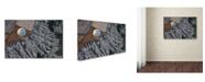 "Trademark Global David Montemurri 'Balloon' Canvas Art - 47"" x 30"" x 2"""