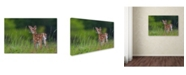 "Trademark Global Nick Kalathas 'Spring Fawn' Canvas Art - 47"" x 30"" x 2"""
