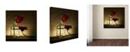 """Trademark Global Wieteke De Kogel 'Sorry Full' Canvas Art - 35"""" x 35"""" x 2"""""""