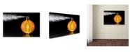 "Trademark Global Jesus M Garcia 'Natural Perfum' Canvas Art - 47"" x 30"" x 2"""