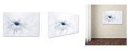 "Trademark Global Jacky Parker 'Serenity' Canvas Art - 32"" x 22"" x 2"""