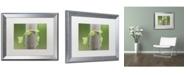 """Trademark Global Kurt Shaffer 'New Growth' Matted Framed Art - 16"""" x 20"""""""