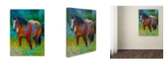 "Trademark Global Marion Rose 'Buckskin II' Canvas Art - 14"" x 19"""