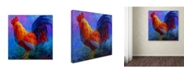 """Trademark Global Marion Rose 'Rooster Bob 1' Canvas Art - 14"""" x 14"""""""