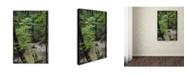 "Trademark Global Kurt Shaffer 'Rainy Day in the Forest' Canvas Art - 16"" x 24"""