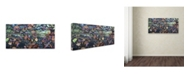 """Trademark Global Kurt Shaffer 'Autumn Mosaic' Canvas Art - 16"""" x 32"""""""