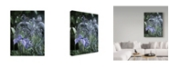 "Trademark Global Ron Parker 'Old Wicker' Canvas Art - 18"" x 24"""