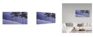 "Trademark Global Ron Parker 'Sea Bank Winter' Canvas Art - 16"" x 32"""