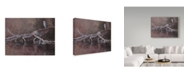 "Trademark Global Rusty Frentner 'Great Blue' Canvas Art - 18"" x 24"""