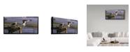 "Trademark Global Wilhelm Goebel 'Chesapeake Treasurers Osprey' Canvas Art - 16"" x 32"""