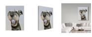 "Trademark Global James Ruby 'Nike' Canvas Art - 14"" x 19"""