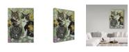 "Trademark Global Jan Benz 'The Trio' Canvas Art - 14"" x 19"""