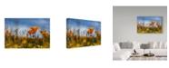 "Trademark Global Janice Sullivan 'Poppy Orange' Canvas Art - 24"" x 16"""