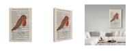"Trademark Global Jane Wilson 'Old Robin' Canvas Art - 16"" x 24"""