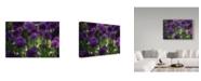 "Trademark Global Kurt Shaffer 'Nature'S Purple Pom Poms' Canvas Art - 19"" x 12"""