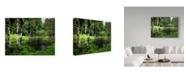 "Trademark Global J.D. Mcfarlan 'Olympic Pk, Wa' Canvas Art - 24"" x 18"""