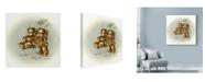 "Trademark Global Peggy Harris 'Teddy Bears Picnic 2' Canvas Art - 18"" x 18"""