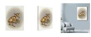"Trademark Global Peggy Harris 'Half Pint' Canvas Art - 18"" x 24"""