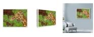 "Trademark Global Ric Stultz 'Canopy Explorer' Canvas Art - 19"" x 14"""