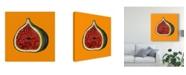 "Trademark Global Sarah Thompson-Engels 'Fig On Orange' Canvas Art - 18"" x 18"""