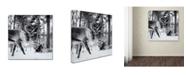 "Trademark Global Hugh Evans 'Reindeer' Canvas Art - 24"" x 24"""