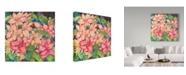 "Trademark Global Joanne Porter 'Pink Variegated Poinsettia' Canvas Art - 35"" x 35"""