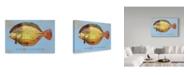 """Trademark Global John W. Golden 'Winter Flounder' Canvas Art - 30"""" x 47"""""""