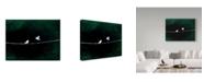 "Trademark Global Nicole Dietz 'Stormy Birds' Canvas Art - 35"" x 47"""