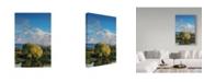 "Trademark Global Ron Parker 'Springtime' Canvas Art - 30"" x 47"""