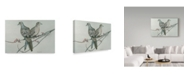 "Trademark Global Rusty Frentner 'Two Birds On Branch' Canvas Art - 30"" x 47"""