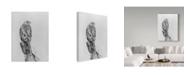 "Trademark Global Rusty Frentner 'Lookout' Canvas Art - 35"" x 47"""